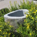 Brunnenfindling mit Naturkruste BWk003 (2)