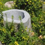 Brunnenfindling mit Naturkruste BWk003 (3)